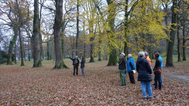 Expertengruppe und Bürgerverein vor Ort im Möslepark; Foto Lehmann
