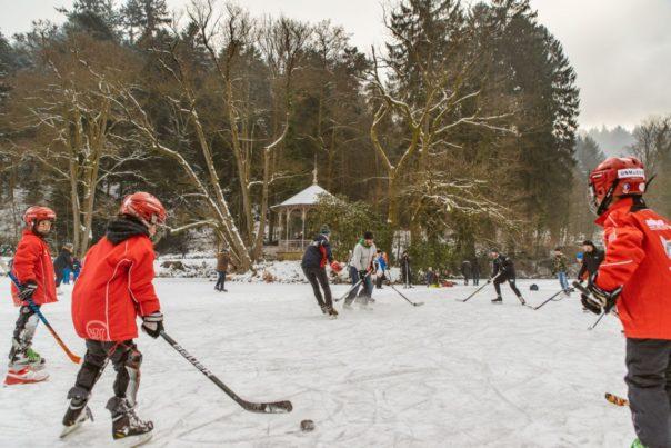 Winterlandschaft - Fionn-Gorilla_de - FG8_0491